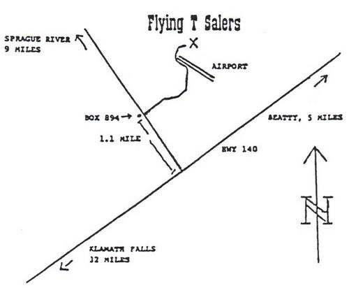 Flying T Salers Contact Us
